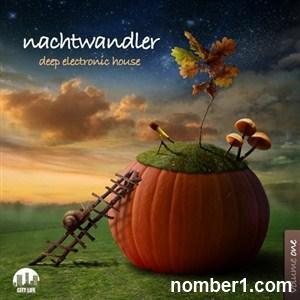 VA - Nachtwandler Vol.1 (Deep Electronic House) (2013) EXSite.pl