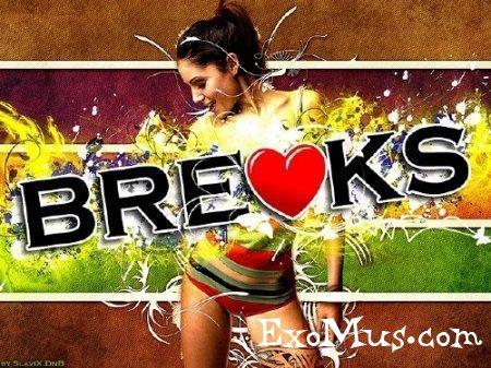 I Love Breaks Vol.5 (2013) EXSite.pl