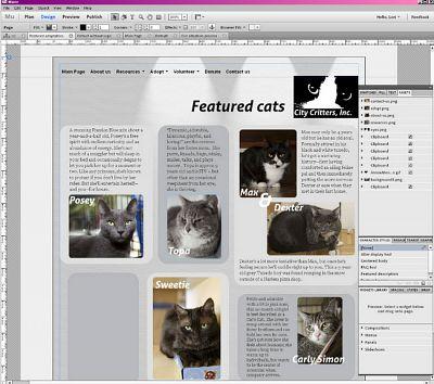 WEB Sitesi Tasarım Programı Adobe Muse v3.2 EXSite.pl